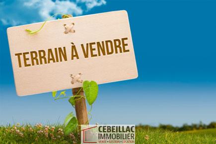 Offres de vente Terrain Saint-Diéry 63320